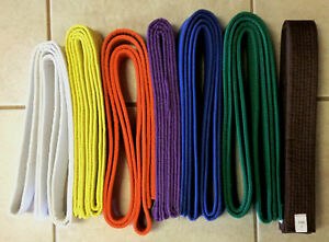 KARATE BELT white yellow orange purple blue green brown NEW!! Martial Taekwondo
