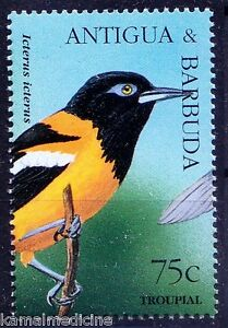 Troupial, Birds, Antigua & Barbuda 1995 MNH