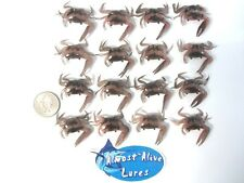 "Almost Alive Lures Artificial Soft Plastic Fiddler Crab 1-1/2"" 16 Pack"