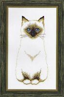 Kit Siamese Cat Sweet Kyra Cross Stitch Chart