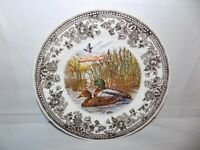 "Queen's Quintessential Game Mallard Duck Dinner Plate 10""  Made In England"