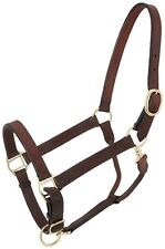 Tough 1 brown leather suckling size Churchill stable halter w/snap 44-2034