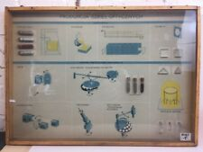 Vintage Wall Display Chart Made in Poland Educational 3D Relief Case (GLASS)