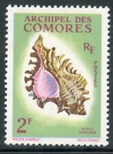 STAMP / TIMBRE DES COMORES N° 21 ** COQUILLAGES