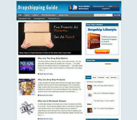 DROPSHIPPING GUIDE BLOG / AFFILIATE STORE & WEBSITE WITH NEW DOMAIN AND HOSTING