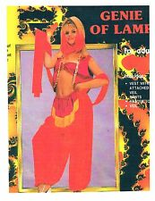 Genie Of Lamp Jeannie Adult Sexy Med Harem Gypsy Alladin Costume