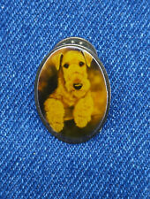 POLLYANNA PICKERING full color AIREDALE TERRIER dog LAPEL PIN made USA