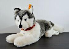 STEIFF Hund Husky BERNIE   104954   KFS mit Etikett   Zustand ist NEUWERTIG
