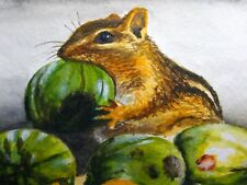 Watercolor Painting Chipmunk Animals Nut Nature ACEO Art