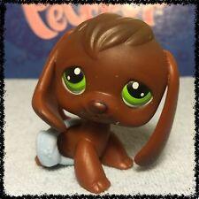 Littlest Pet Shop LPS RARE CHOCOLATE BROWN BEAGLE DOG GREEN EYES #77 BLEMISHED