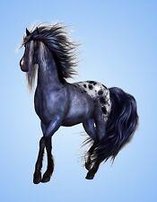 METAL REFRIGERATOR MAGNET Fantasy Horse Blue Background