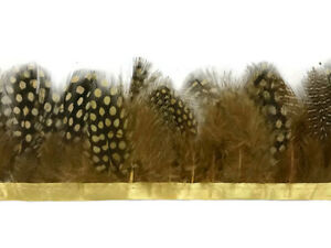 1 Yard - Mustard Yellow Guinea Hen Plumage Feather Dress costume craft supplier
