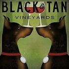 Black & Tan Vineyards -Double Doberman Pinschers Wine by Ryan Fowler 12x12 Print