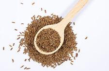 1 kg Kreuzkümmel ganz - Cumin Kümmel Samen Gewürz