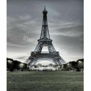 Eiffel Tower Photography Background Backdrops Studio Photo 3x5ft Vinyl Props
