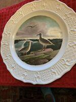 Delano Studios New England Seagulls #475 Plate