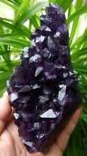 F2430 Dreamlike Natural Amethyst / Purple Quartz Crystal Cluster Specimen  735g