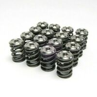 Skunk2 Racing  Acura Integra Gsr Type R B18c B18c1 B18c5 Valve Springs Retainers