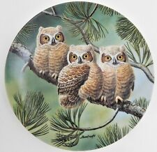 Knowles Three of a Kind Great Horned Owls Plate Joe Thornbrugh Baby Owls #4 Usa
