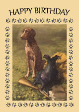 GERMAN SHORTHAIRED POINTER DOG AND GUN DOG  BIRTHDAY GREETINGS NOTE CARD