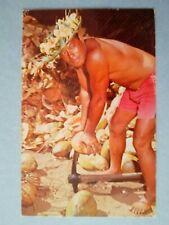 1964 husking coconuts with a pick at the Kodak Hula Show Waikiki  Hawaii