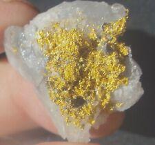Alaskan Gold Nugget Authentic Pure Gold Crystal Specimen 8.73 Grams- 43.6 Carats