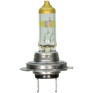 Headlight Bulb-Night Defense|WAGNER Lighting BPH7ND - 12,000 Mile Warranty