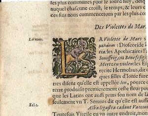 Stampa antica CAPOLETTERA L con cavaliere 1653 Old antique Drop Cap