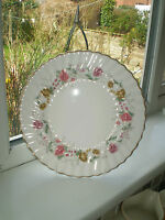 Royal Doulton Rosell Dinner Plate 27 cm Bone China 2nd Quality Vintage British