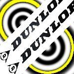"DUNLOP BLACK 23"" LONG stickers decals large for trailer sponsor racing tires car"
