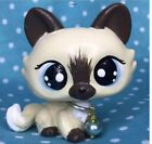 Mini Toy Pet Shop Cute Crouching Cat, Hand Painted With Accesorios
