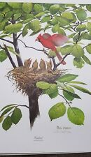 Ray Harm Autographed Lithograph Print Cardinal Frame House Gallery