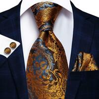 Gold Blue Brown Yellow Paisley Mens Tie Necktie Silk Set Wedding Business Dinner