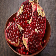 50pcs Red Pomegranate Seeds Delicious Fruit Sweet Melon Very Big Home Plant