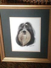 Shih Tzu Robert J. May Watercolor Print Animal Original Realism Signed