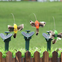 Butterflies Hummingbirds Educational Horticultural Gardens Arcade  Decoration