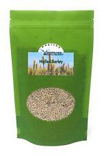 Hulled Barley, 1 lb. Bag ~ YANKEETRADERS Brand ~ FREE SHIPPING