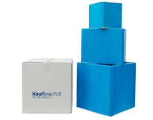 """Styrofoam Insulated Container Box Cooler KoolTemp 2"""" Thick Tall Blue Heavy Duty"""