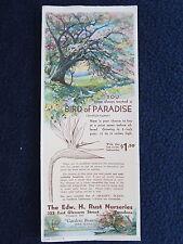 Vintage Blotter Bird of Paradise Edw. H. Rust Nurseries Pasadena CA 1940s