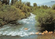 Israel The Banias Main Source of the Jordan River Le Fleuve Banias