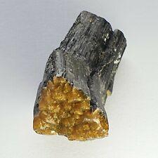 Fluor-Liddicoatite