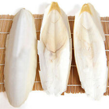 1~5Pcs Cuttle Fish Cuttlefish Bone For Birds Pet Budgie Reptiles Tortoise Food