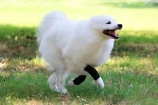 Nature Pet Sport Dog Front Leg Sport Bandage / Dog Agility Wrist Bandage