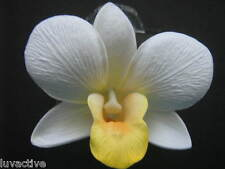 Hawaiian Orchid Foam Flower Hair Clip  White Yellow