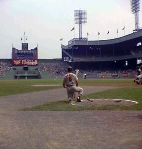 MLB Stan the Man Musial Polo Grounds On Deck Circle 8 X 10 Color Photo Picture