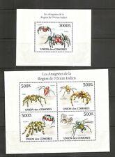 Comoros / 2010 Spiders Of the Indian Ocean region Souvenir,Miniature Sheet . MNH