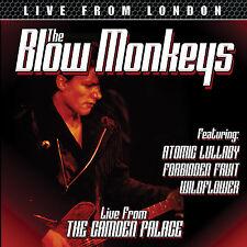 BLOW MONKEYS New Sealed Ltd 2017 UNRELEASED LIVE 1985 CONCERT CD