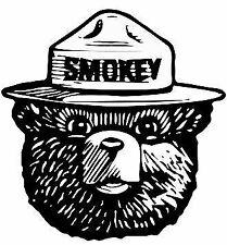 Smokey The Bear Fight Forest Fires Firefighter Vinyl Sticker Decal