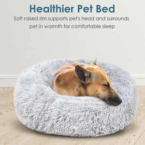 KTROMAN Dog CAT Bed 70 x 50 x 14cm Dog Beds Dogs Kennels Waterproof Dogs Bed Fit Medium Sized Dog Cat Anti-bite soft Bed Kennels M