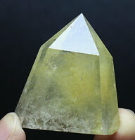 Rare! ! Natural Golden Hair Rutilated Clear Quartz Crystal Wand Point Specimen
